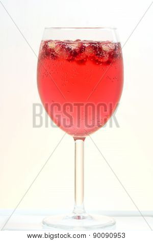 Fresh Pomegranate Prosecco Cocktail Summer Drink