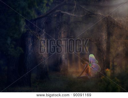 Illustration of a 3d fairy girl in a magical forest. poster