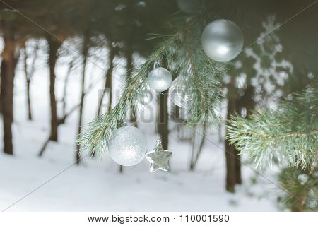 Evergreen Pine Forest With Christmas Ornament Baubles And Snowflakes At Foreground