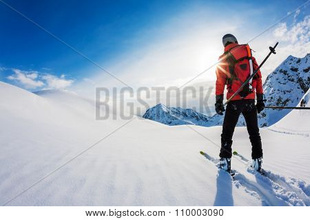 Skiing: rear view of a skier in powder snow. Italian Alps, Europe.
