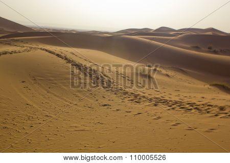 Begin the day in the Erg Chebbi desert