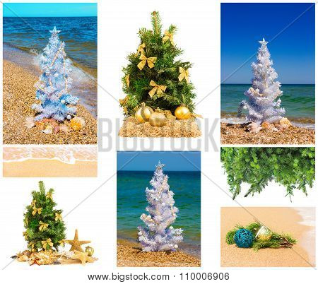 Christmas Trees With Decorations, Set