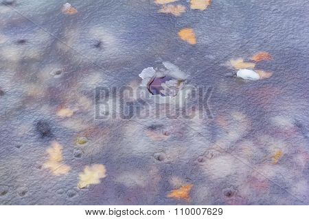 blurred background melted the ice in a puddle and yellow leaves in the offseason