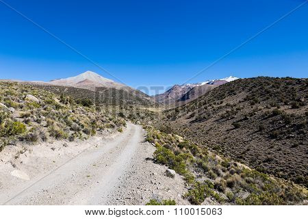 Small Path In The Andes. Park Sajama, Bolivia