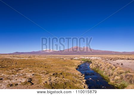 Small Stream In The Andes. Park Sajama, Bolivia
