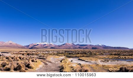High Andean Tundra Landscape In The Mountains Of The Andes.
