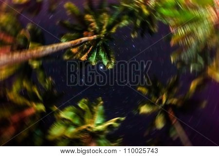 Blurred Defocused Sky Full Of Stars In The Jungle Of El Nido - Island Of Palawan In Philippines
