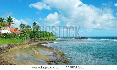 Ocean beach with palm trees and blue sky. Sri Lanka