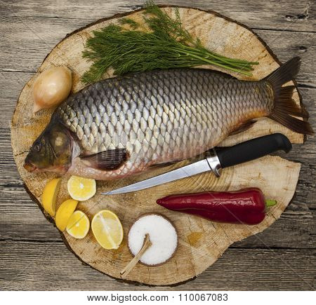 Fresh raw fish carp caught lying on a wooden stump with a knife and slices of lemon and with salt dill. Live fish crucian Carassius auratus gibelio
