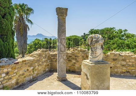 The Gardens Of Carthage