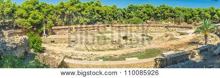 The Huge Amphitheatre