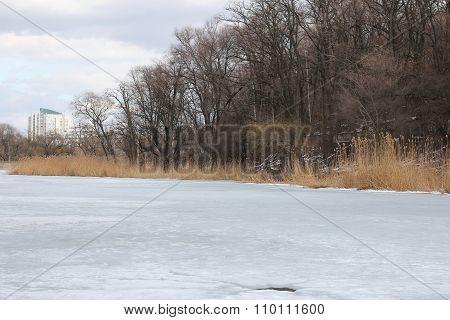 Beauty Frozen Winter Landscape
