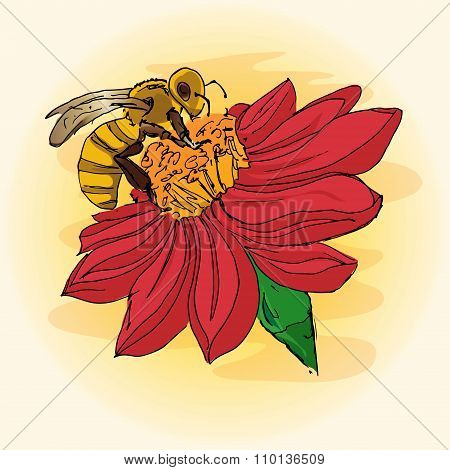 Illustration Of A Bee On A Flower, Pollination, Hand-drawing