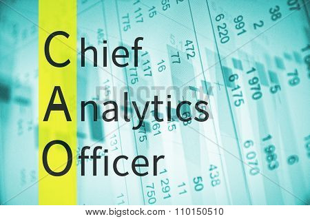 Chief analytics officer