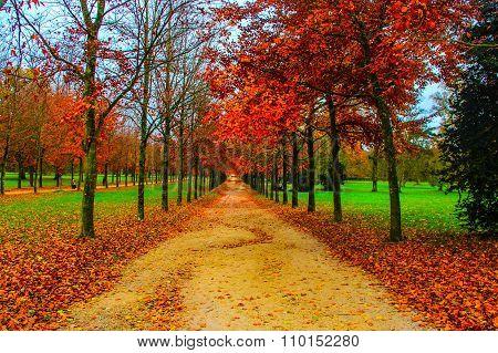 Landscape on Fall