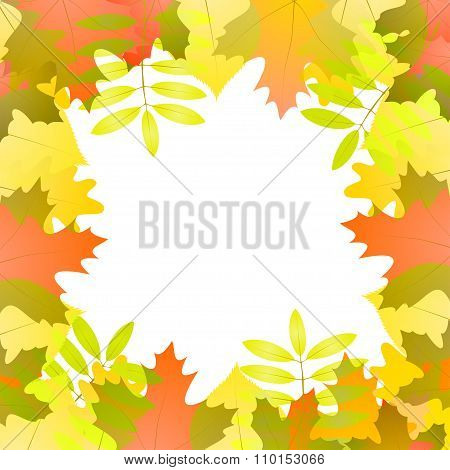 Vector Background With Autumn Leaves Around White Space, In Red, Green, White And Orange Color