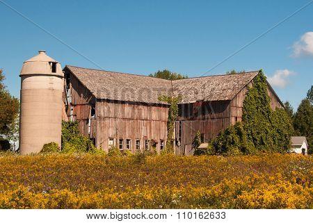Weathered Autumn Barn