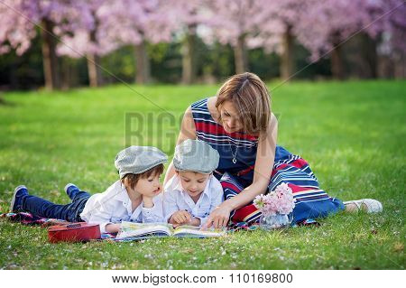 Beautiful Portrait Of Two Adorable Caucasian Boys And Mother, Reading A Book In A Cherry Tree Bloomi