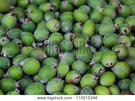 Fresh Ripe Sweet Feijoa Fruits