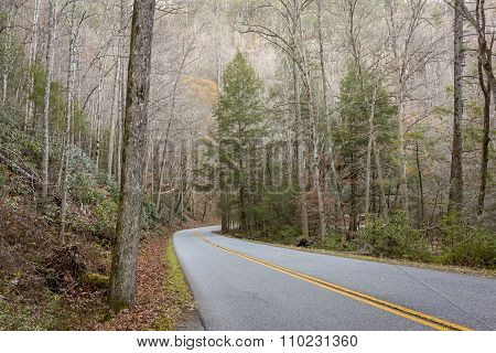 Road Winding Through The Smoky Mountains - Tennessee