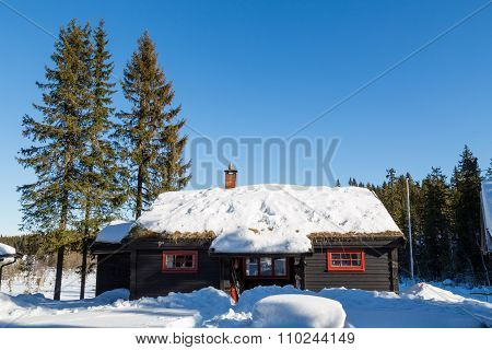 Typical Black Norwegian Cabin With Fir Trees Surrounded By Deep Snow In The Forest