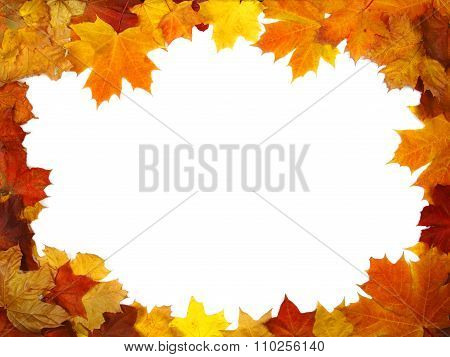 Brughtful Frame Composed Of Colorful Autumn Leaves