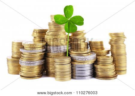 Clover leaf and stacks of coins isolated on white