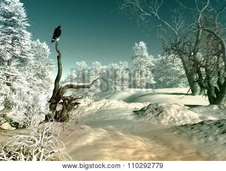 Winter Wonderland Scene, 3D Cg