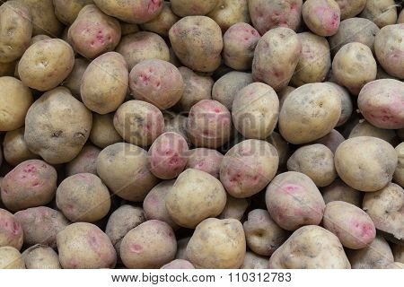 Canarian Wrinkly Potatoes - Papas Arrugadas