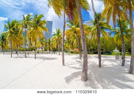 Sandy beach at Bicentennial park in Miami with a view of the city skyline