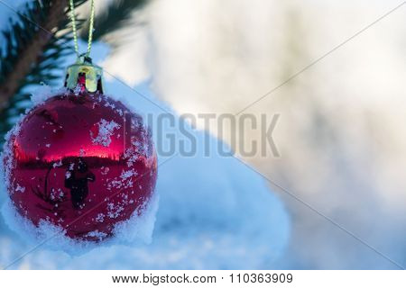 christmas red balls  on pine tree covered with fresh snow on beautful winter day sunset