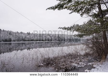 Light snow under subdued overcast grey November sky.  Reflections of waterfront forest.