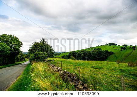 Road, Green Meadows And Trees In Peak District National Park