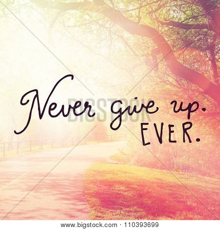 Inspirational Typographic Quote - Never give up Ever