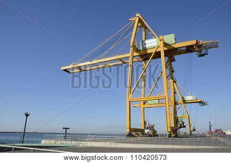 Large Yellow Crane