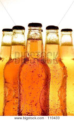 Beverage Series: Beer