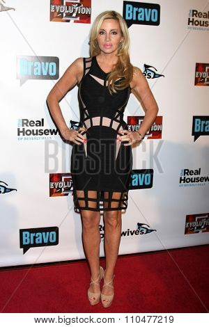 LOS ANGELES - DEC 3:  Camille Grammer at the The Real Housewives of Beverly Hills  Premiere Red Carpet 2015 at the W Hotel Hollywood on December 3, 2015 in Los Angeles, CA