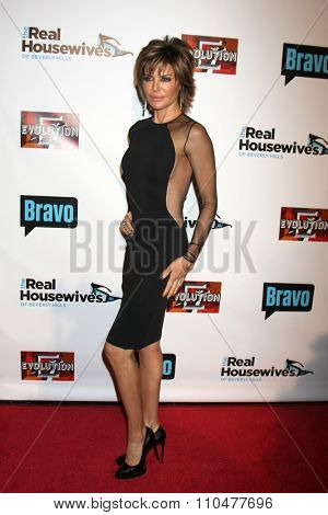 LOS ANGELES - DEC 3:  Lisa Rinna at the The Real Housewives of Beverly Hills Premiere Red Carpet 2015 at the W Hotel Hollywood on December 3, 2015 in Los Angeles, CA