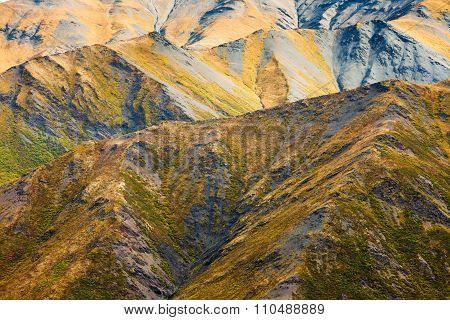 Alpine Tundra Habitat In High Mountain Range