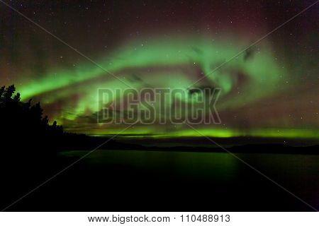 Aurora Borealis Swirls Dancing Over Lake Laberge Yukon Canada