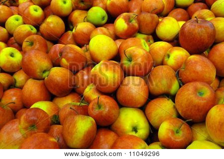 Pinova apples together to be sold at market. poster