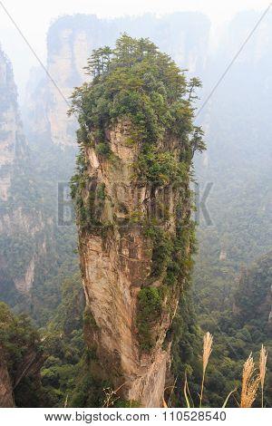 Hallelujah Mountain In Zhangjiajie National Park ( Tian Zhi Shan )