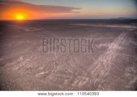 Nazca Lines In The Beautiful Sunset.