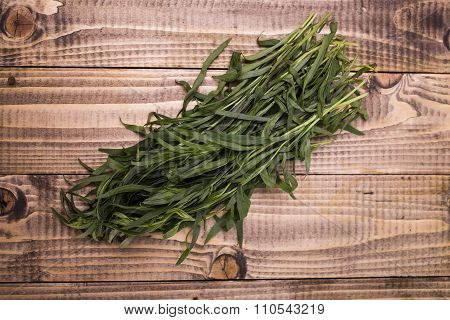 Domestic Eating Herb