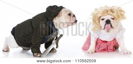 bulldogs dressed up like a knight and a damsel in distress on white background