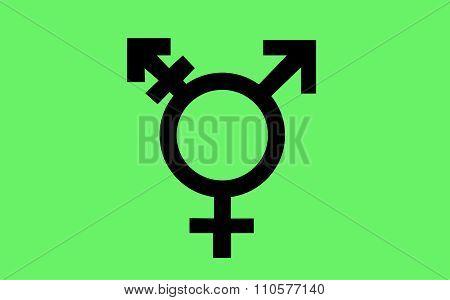 Israeli transgender pride flag in vector format. LGBT community flag. poster
