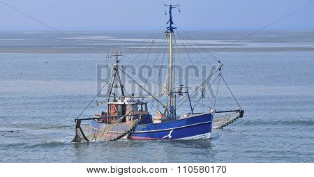 traditional Crab Fishing Trawler in wadden Sea in East Frisia near Norderney Island,North Sea,Germany