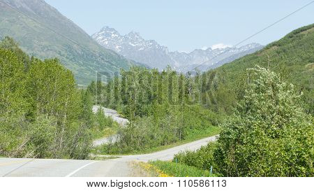 Road through Alaska