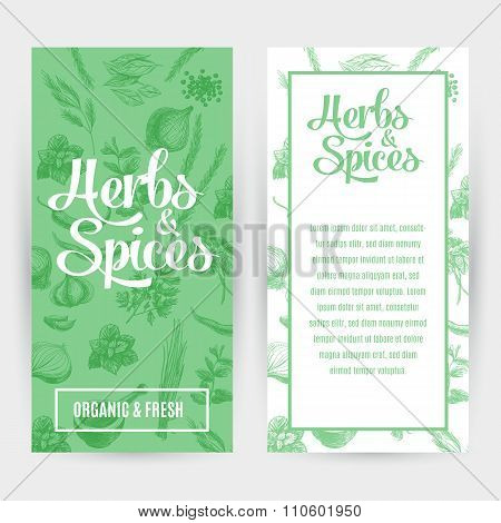 Vector banners set with hand drawn herbs and spices.