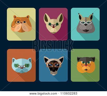 Cats avatar icon set